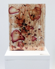 Specimen Dimensions Variable Blood, Bleach on Acrylic on Wood 2013