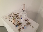 Empathy/Relic #2 Medical Ephemera, Dead Insects, Dead Flowers, Garlic 2013